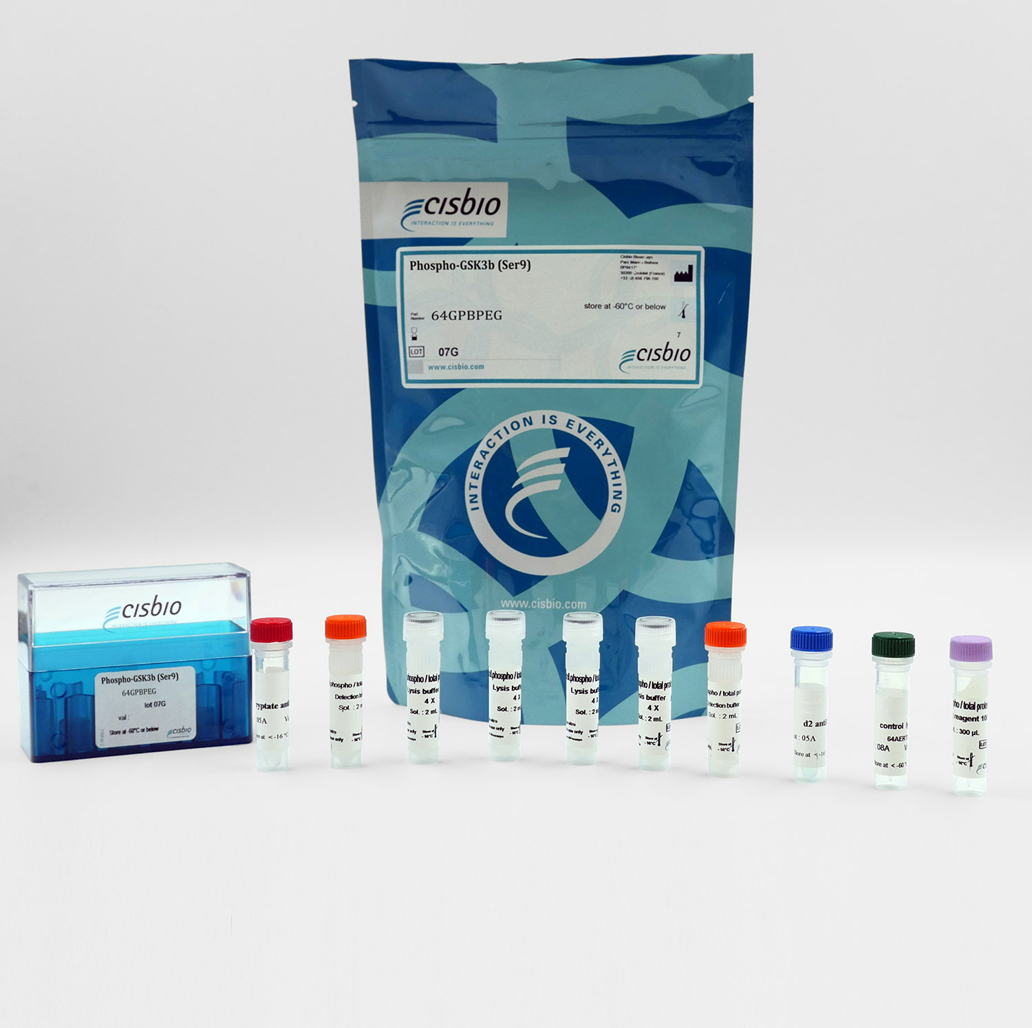 Phospho-GSK3 beta (Ser9) kit I Cisbio
